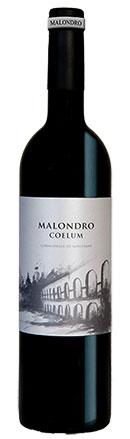 vino celler malondro coelum
